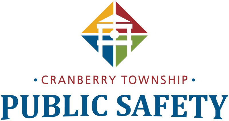 Public Safety logo
